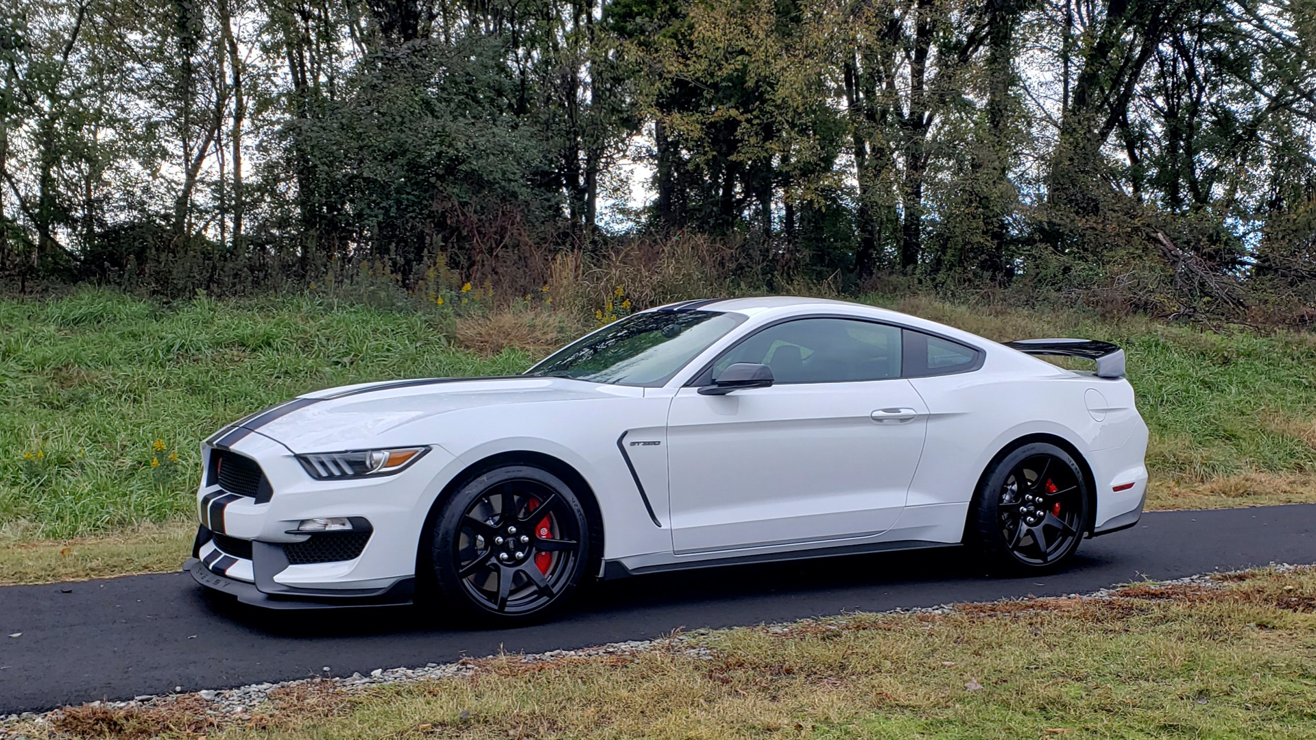 Used 2019 Ford MUSTANG SHELBY GT350R COUPE / B&O SOUND / ELECTRONICS PKG for sale Sold at Formula Imports in Charlotte NC 28227 2
