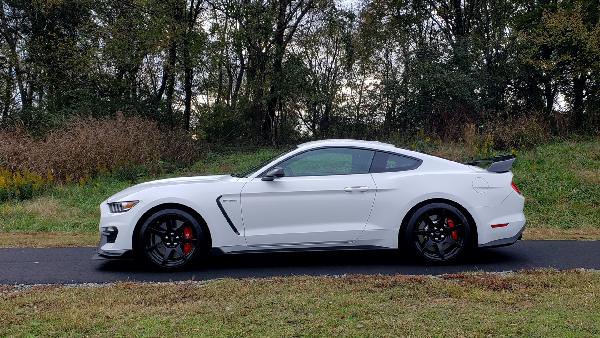 Used 2019 Ford MUSTANG SHELBY GT350R COUPE / B&O SOUND / ELECTRONICS PKG for sale Sold at Formula Imports in Charlotte NC 28227 3