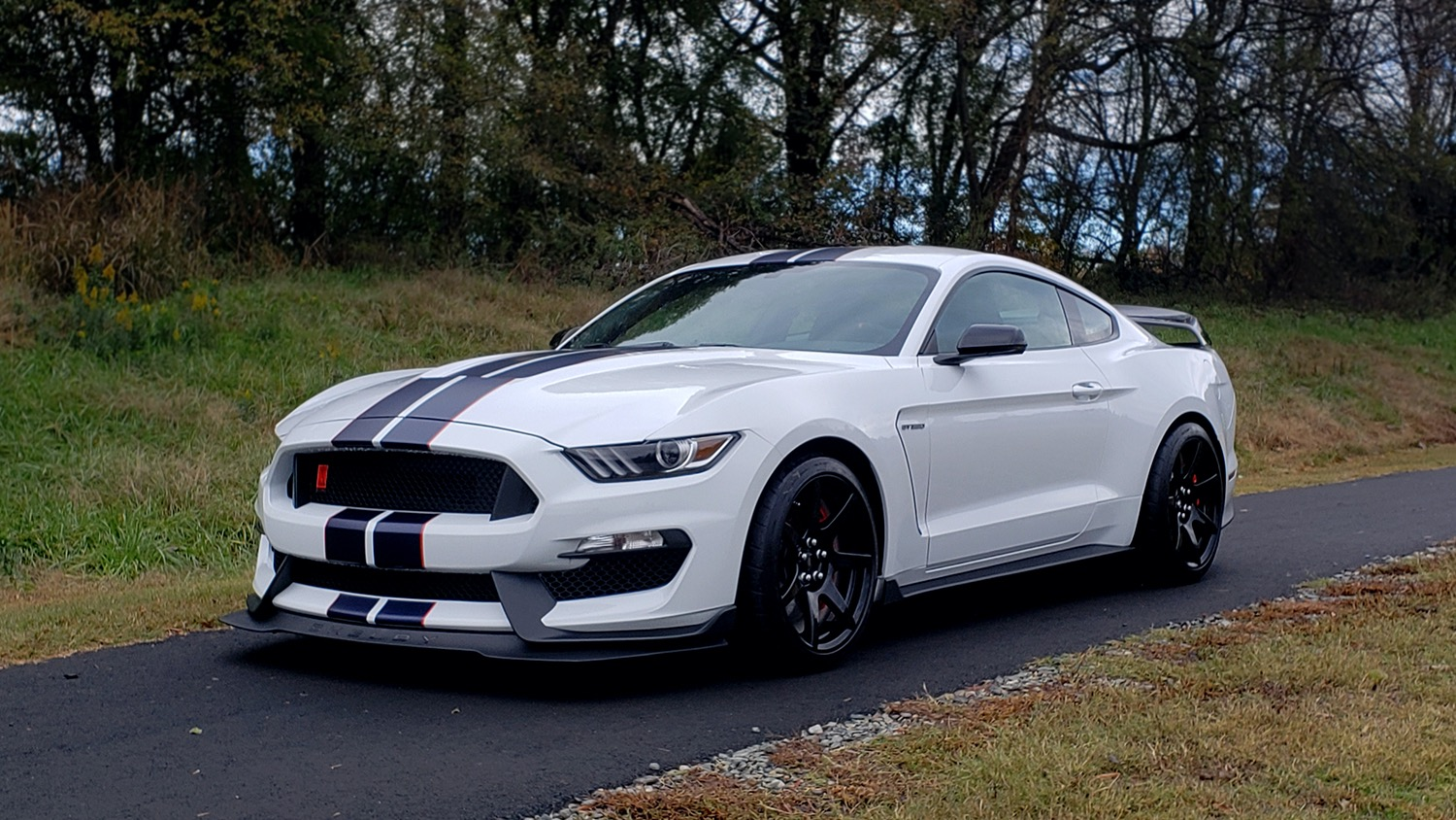 Used 2019 Ford MUSTANG SHELBY GT350R COUPE / B&O SOUND / ELECTRONICS PKG for sale Sold at Formula Imports in Charlotte NC 28227 79