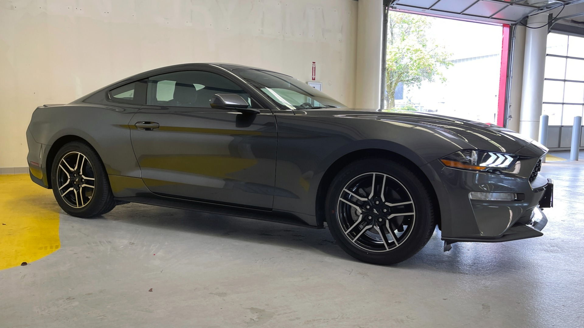 Used 2019 Ford MUSTANG ECOBOOST 2.3L / 10-SPD AUTO / SYNC3 8INCH SCREEN / TRACK APPS / REARVIEW for sale $31,795 at Formula Imports in Charlotte NC 28227 5