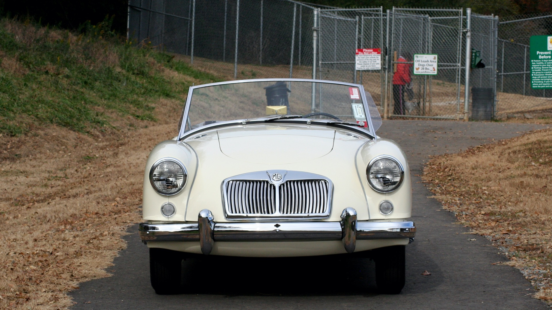 Used 1956 MG A ROADSTER / 4-SPD MAN / FULLY RESTORED / ALL NEW / SHOWROOM CONDITION for sale Sold at Formula Imports in Charlotte NC 28227 9